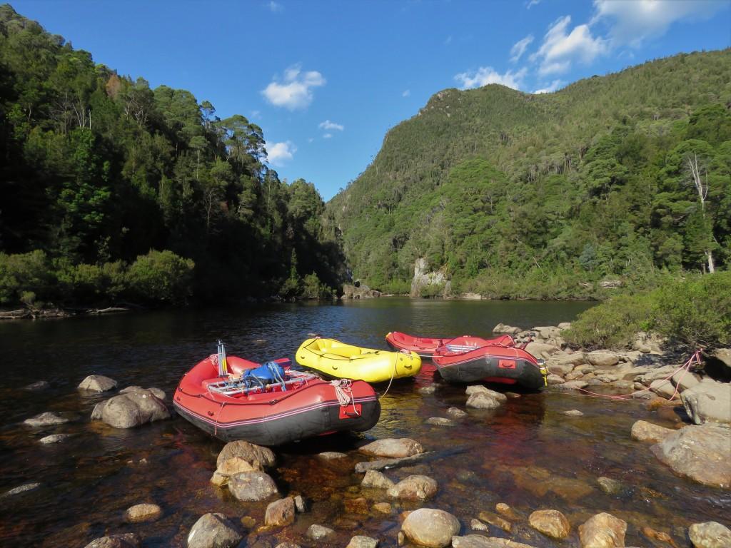Tranquil Franklin River