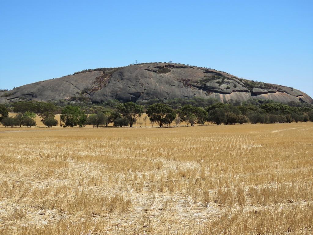 Kokerbin Rock - Wheatbelt