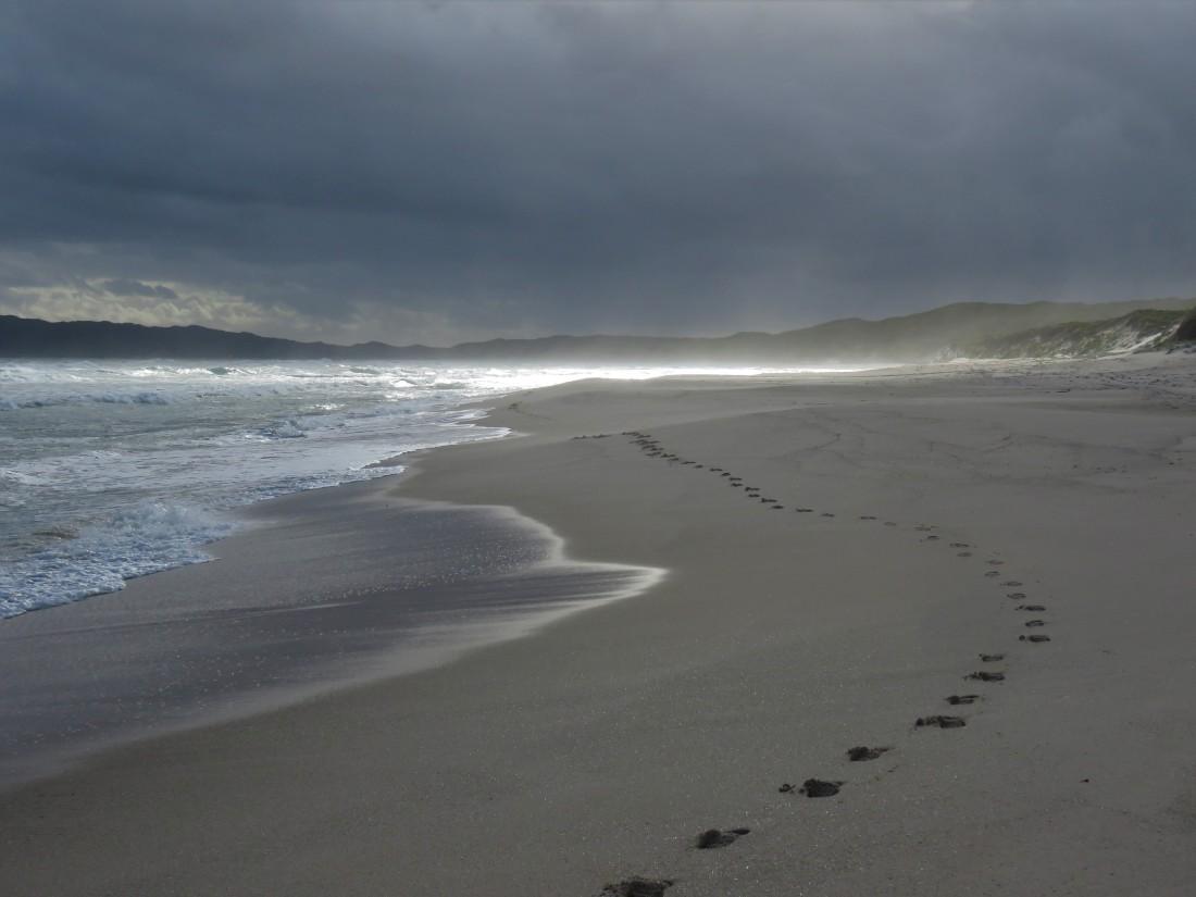 Bibbulmun Track - Footprints in the sand