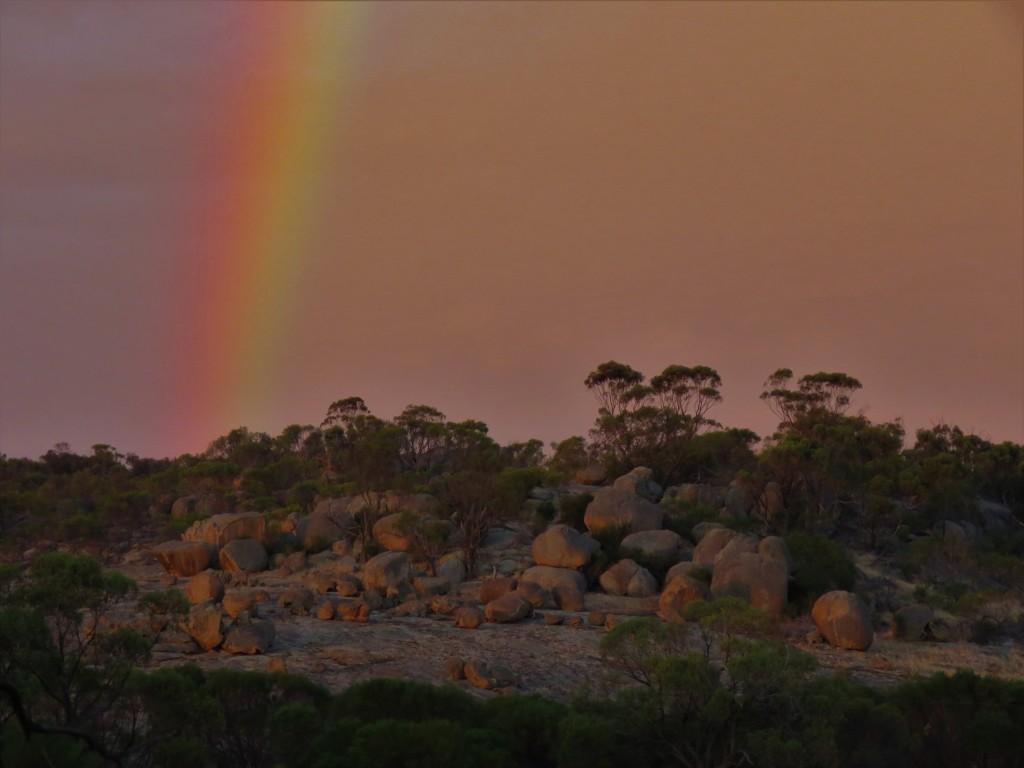 Rainbow at Mt Caroline Nature Reserve